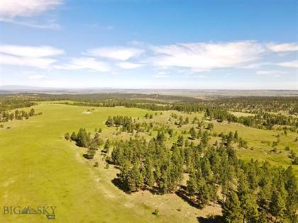 Lots And Land for sale in Tbd Bender Road, Roundup, MT, 59072