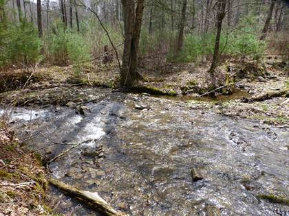 Lots And Land for sale in 61 Acres Upper Back Creek Rte. 600 Rd, Monterey, VA, 24465