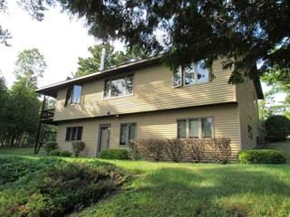 Single Family for sale in 15834 US41, Copper Harbor, MI, 49918