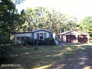 Single Family for sale in 7365 N 128th Avenue, Crystal, MI, 49420