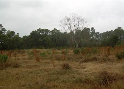 Lots And Land for sale in 10326 SHARK RD E, Jacksonville, FL, 32226