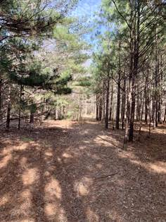 Lots And Land for sale in Stewart Rd, Ackerman, MS, 39735