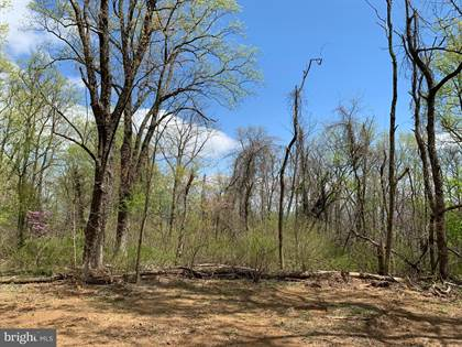 Lots And Land for sale in 19802 OLD BLUERIDGE ROAD, Bluemont, VA, 20135