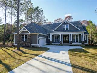 Single Family for sale in 160 Iris Way, Hampstead, NC, 28443
