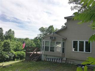 Single Family for sale in 1974 HUNTERSLAND RD, Middleburgh, NY, 12122