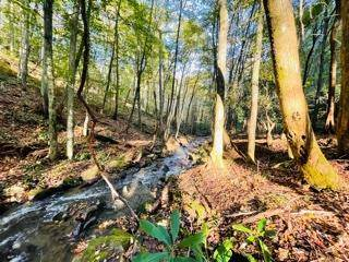 Lots And Land for sale in 00 Little Buffalo 1, Robbinsville, NC, 28771