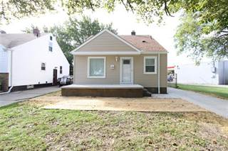 Single Family for sale in 1155 DETROIT Avenue, Lincoln Park, MI, 48146