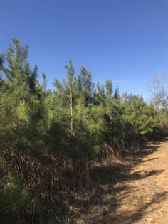 Lots And Land for sale in 0 Mose Manning, Jayess, MS, 39641