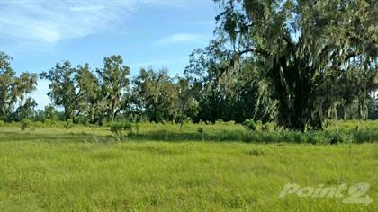 Lot/Land for sale in Highway 129 , McAlpin, FL, 32062