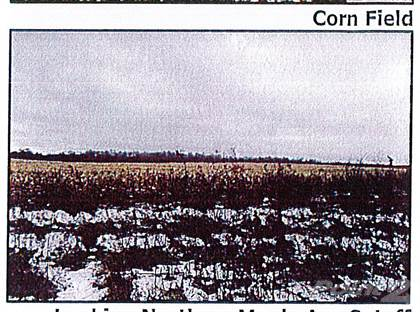 Agricultural for sale in 6877 Lake Rd, Sodus, NY, 14551