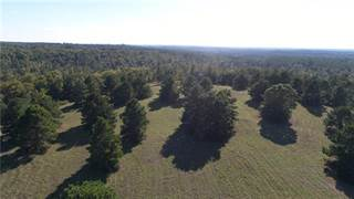 Residential Property for sale in 1820 An County Road 156, Palestine, TX, 75801