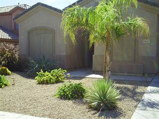Single Family for rent in 13557 W HOLLY Street, Goodyear, AZ, 85395