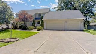 Single Family for sale in 8455 Hickory Hills Drive, Argenta, IL, 62501