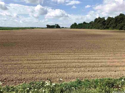 Farm And Agriculture for sale in No address available, Rector, AR, 72461
