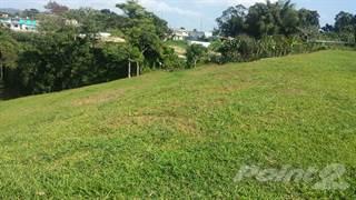 Land for sale in Bo. Voladoras, carr 404 km. 2.4 int., Moca, PR, 00676