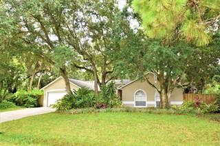 Single Family for sale in 980 Brisbane Street, Palm Bay, FL, 32907