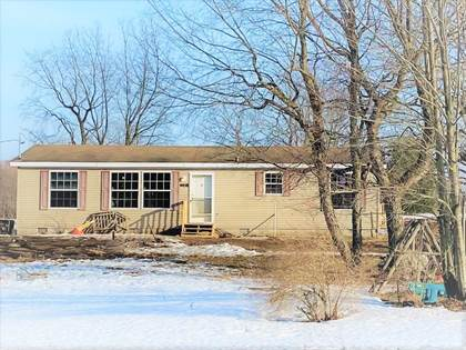 Residential Property for sale in 4458 Vista Valley Trail, Mesick, MI, 49668