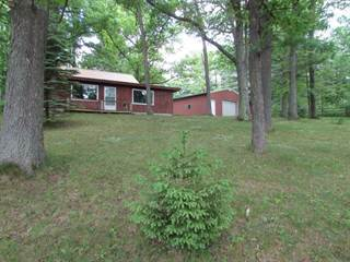 Single Family for sale in 9601 M-186, Greater Fife Lake, MI, 49633