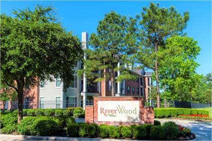 Apartment for rent in 201 River pointe Drive, Conroe, TX, 77304