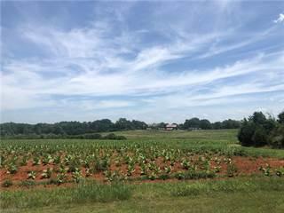 Land for sale in 02 Amos Ridge Road, Sandy Ridge, NC, 27046