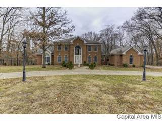 Single Family for sale in 10 OLD OAKS DR, Hillsboro, IL, 62049