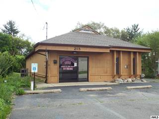 Comm/Ind for sale in 215 S DETTMAN RD, Jackson, MI, 49203