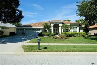 Single Family for sale in 3721 JOHNATHON AVENUE, East Lake, FL, 34685