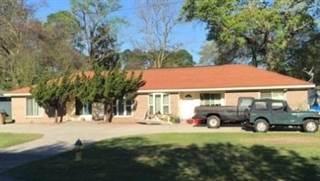 Multi-family Home for sale in 7302 Johnny Mercer Blvd, Wilmington Island, GA, 31410
