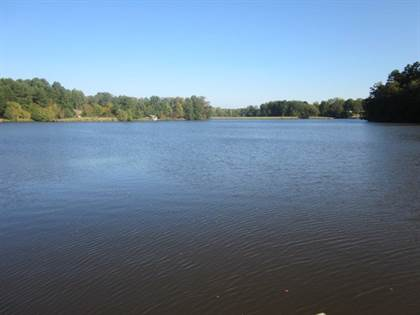Lots And Land for sale in 000 Spring Lake East End, Carrollton, MS, 38917