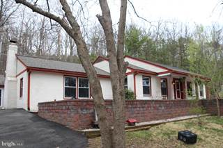 Single Family for sale in 4119 BULL RUN MOUNTAIN RD, The Plains, VA, 20198