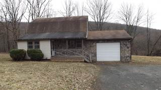 Single Family for sale in 217 Bethel Hill Road, Greater Lanesboro, PA, 18847