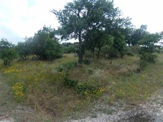 Land for sale in La Plata Ct/ Calle Cortez, Buchanan Dam, TX, 78609