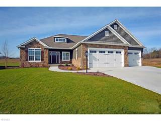 Single Family for sale in 8722 SCOTSBURY GLEN, Greater Lake Cable, OH, 44646