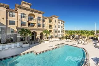 Apartment for rent in Bonterra Parc - C1, Wesley Chapel, FL, 33544