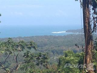 Commercial for sale in Perfect Building Site for your Boutique Hotel! Costa Rica Caribbean Coast, Hone Creek, Limón