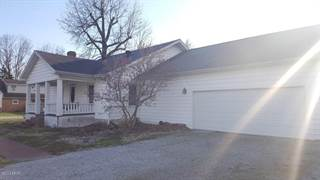 Single Family for sale in 115 Walnut Street, De Soto, IL, 62924