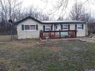Single Family for sale in HC 1 Box 255, Grandin, MO, 63943