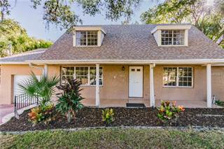 Single Family for sale in 3810 RIVER GROVE DRIVE, Tampa, FL, 33610