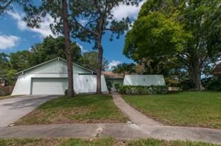 Single Family for sale in 1544 Huntington Court, Palm Harbor, FL, 34683