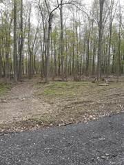 Land for sale in Parcel D Hidden Creek Court, Dexter, MI, 48130
