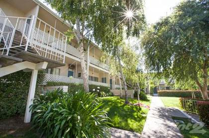 Apartment for rent in Prospect Plaza Apartments, San Jose, CA, 95129