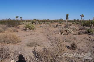 Residential Property for sale in 2107 Old Woamn Springs Rd. APN 0629-181-01-0000, Yucca Valley, CA, 92284