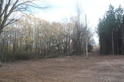 Lots And Land for sale in 253 Hogan Road, Early Grove, MS, 38635
