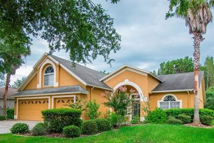 Residential Property for sale in 10217 TIMBERLAND POINT DRIVE, Tampa, FL, 33647
