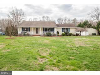 Single Family for sale in 374 BARNEY JENKINS ROAD, Felton, DE, 19943