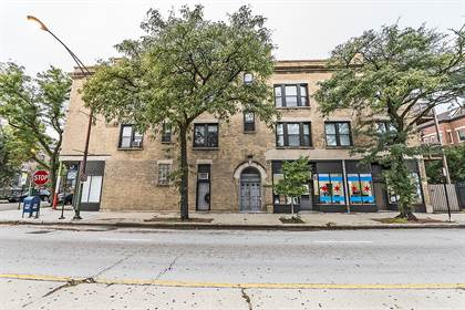 Apartment for rent in 722 S Racine, Chicago, IL, 60607