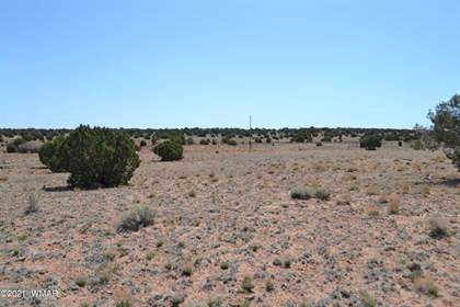 Lots And Land for sale in TBD N 9158, Greater St. Johns, AZ, 85924