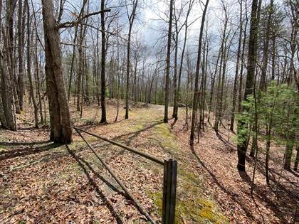Lots And Land for sale in 3086 Wyrick Trail, Bland, VA, 24315