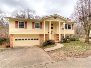 Single Family for sale in 785 Roby Road, Huntington, WV, 25705