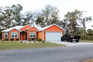 Single Family for sale in 9049 Dorie Drive, Fanning Springs, FL, 32693